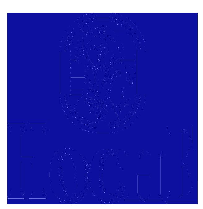 HOCHE-LOGO